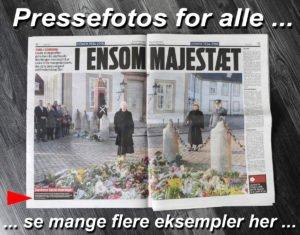 Pressefoto af Dronningen der beundrer blomsterhav foran Fredensborg Slot