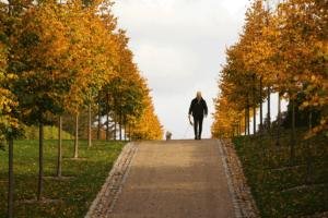 Illustrationsfoto med corona fri stor afstand til damen der lufter hund i Fredensborg Slotshave er et billede lavet til Fredensborg Kommune af fotograf Peter Dahlerup