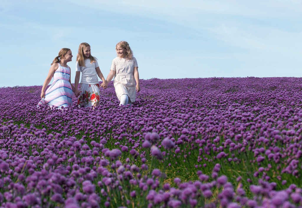 Girls-in-purple-onion-field-fotograf-Peter-Dahlerup